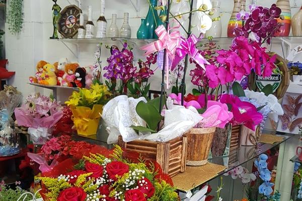 tutto-bello-floricultura-118BBD015A-91CD-F46C-7DF6-CD7AAA5B54D3.jpg