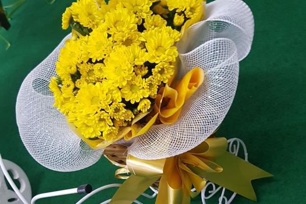 tutto-bello-floricultura-181F16E256-A1B2-CDBA-9A18-DB43F8EA9516.jpg