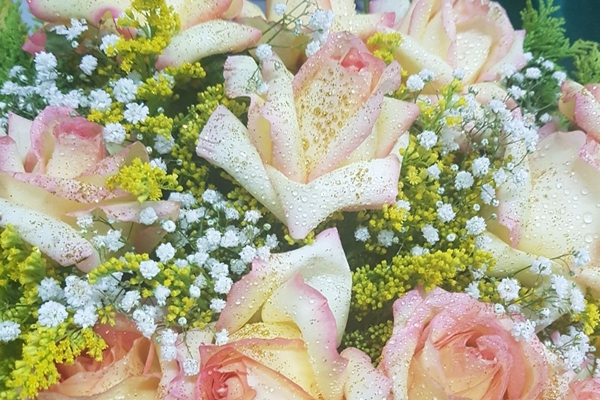 tutto-bello-floricultura-19F543DB01-56F5-EA45-6FD7-53B8937EEEE8.jpg