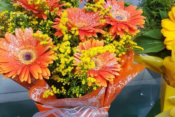 tutto-bello-floricultura-257576529D-6D95-5739-29C8-C7D21B3A5F40.jpg