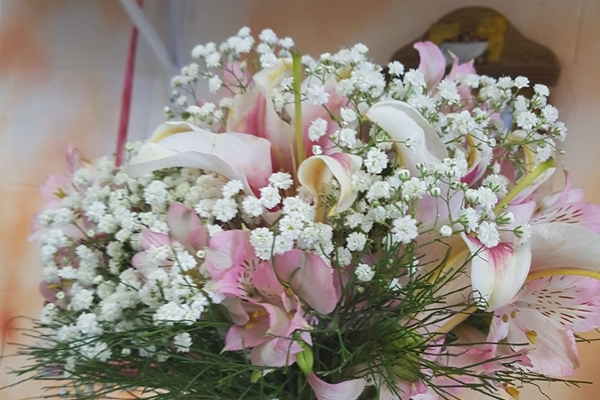 tutto-bello-floricultura-4278E1726D-D254-E892-F8EA-2383C3AE2729.jpg