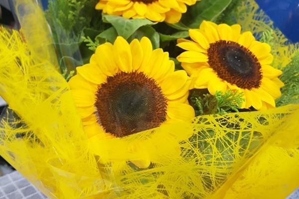 tutto-bello-floricultura-4466F0B08C-D673-53BB-863D-03853DC4F7B4.jpg