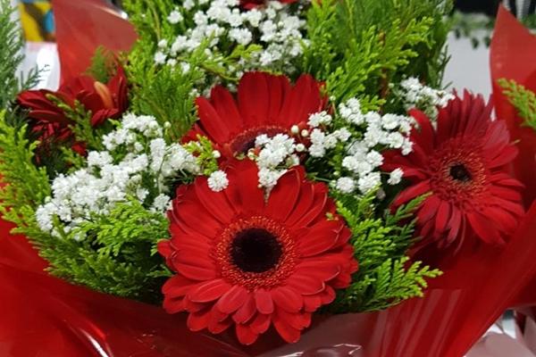 tutto-bello-floricultura-45DB85256F-C5F3-DF32-9C6A-887CAE05678B.jpg