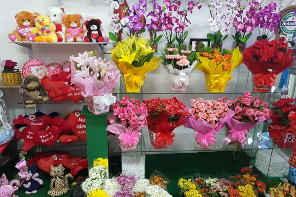 tutto-bello-floricultura-3567C4D6B-72E9-927D-A888-46BB9E137D6D.jpg